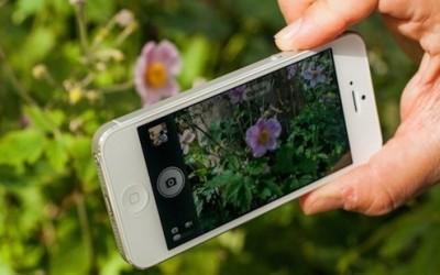 Comment réaliser une bonne photo avec votre téléphone