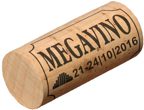 Megavino 2016